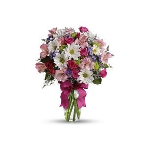 鲜花品种5