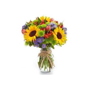 鲜花品种6